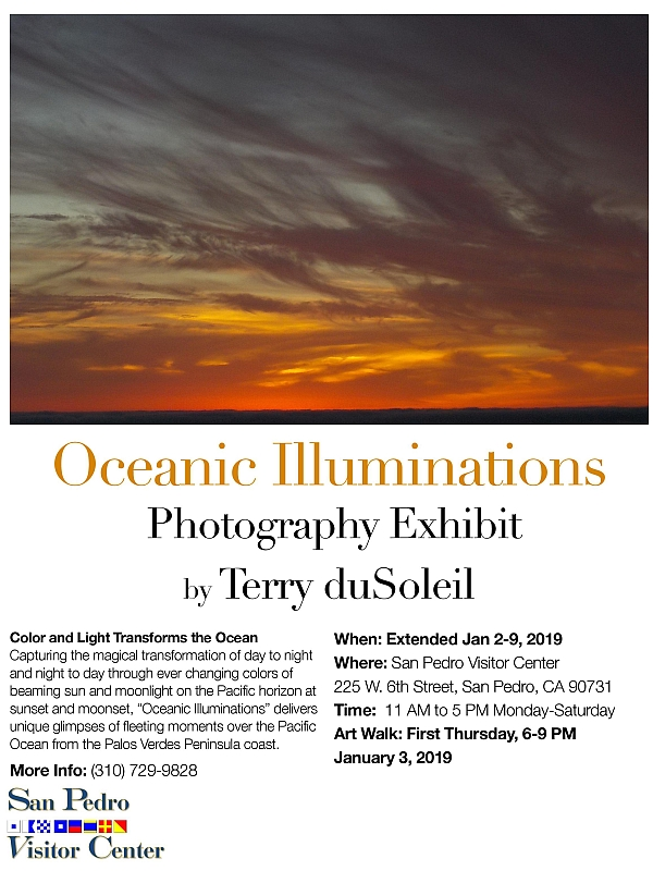 Terry DuSoleil Exhibit January 2019