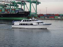 Catalina Express takes you to the island in just about an hour directly from San Pedro